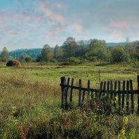 Старый забор :: Дмитрий Конев