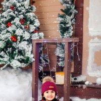 Зимняя сказка :: Валерия Ступина