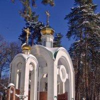 церковные ворота :: юрий иванов