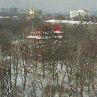 Зимний бульвар :: Наталья Тимошенко