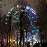 1-е января 2017г.,вечер в парке... :: Тамара (st.tamara)