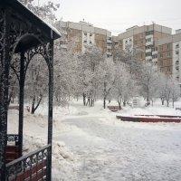 Зима 2017г :: Serg