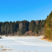 Природа в феврале :: Милешкин Владимир Алексеевич