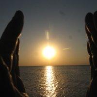 Солнце в бокале ладоней... :: Алекс Аро Аро