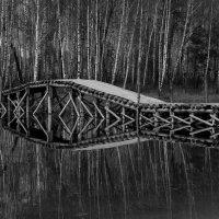 Мосток :: Татьяна Панчешная