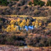 озерцо в горах :: Sergey Bagach