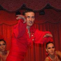 Фламенко 1 :: Vitalet