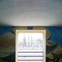 Окно :: Юрий Зима