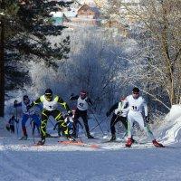 Бегут лыжники. :: Наталья