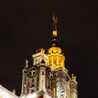 МГУ ночью :: Olga Photo