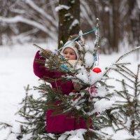 Елки последний наряд этой зимой. :: Владимир Безбородов