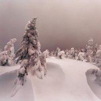 Гора молодого месяца :: Владимир Кочкин