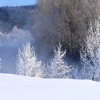 Чародейкою  зимою... :: Наталья Казанцева