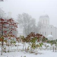 Снежный пейзаж с Борисоглебским собором :: Сергей Тарабара