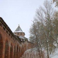 кремлевская стена :: Наталья Сазонова