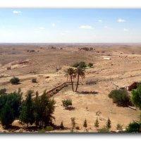 Пейзаж пустыни. :: Чария Зоя