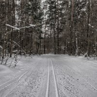 Линии дорог ... :: Va-Dim ...