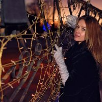 Зимний вечер :: Женя Лузгин