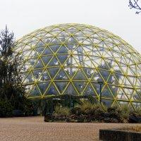 Зимой в ботаническом саду  дюссельдорфского университета :: Witalij Loewin