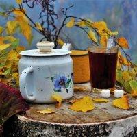 Чай в лесу :: Сергей Чиняев