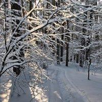 Встречает солнышко уставший снегопад... :: Лесо-Вед (Баранов)