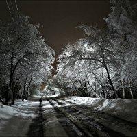 Ночью выпал снег :: Leonid Rutov