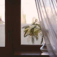 Утро... :: Liliya
