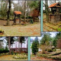В парке Анапы :: Нина Бутко