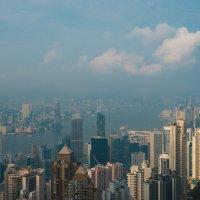 Hong Kong City View :: Sofia Rakitskaia