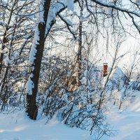 Снежная зима :: Любовь Потеряхина