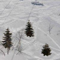 В снегах вершины утопают, :: Люша