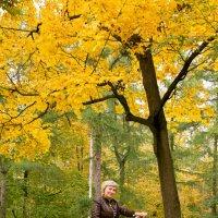 """Велосипедная прогулка к """"Волшебнику Золотого Парка"""" :: Андрей Уткин"""
