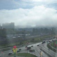В лучах утреннего тумана :: Жанна Литуева