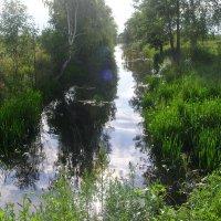 Валовая канава (бывшая речка Салмовка) :: Виктор Мухин