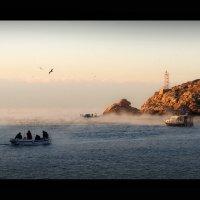 За рыбкой морозным утром. :: Mihail Mihaylov
