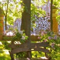 июнь в Михайловском саду :: Елена