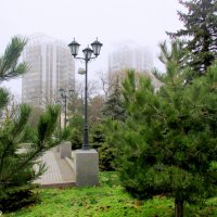 Туманный день в Анапе :: Нина Бутко