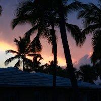 Доминиканская Республика :: Julia Sidorova