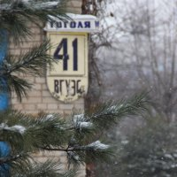 Начало зимы (декабрь) :: Инесса Тетерина