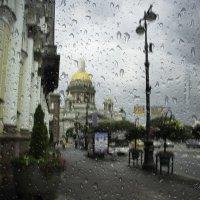 В Питере дождь.. :: Владимир Шустов