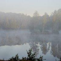 В тумане утреннем..... :: Юрий Цыплятников