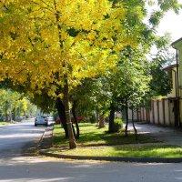 Осеннее. :: ЕВГЕНИЯ