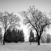 Зимние фото :: Genych