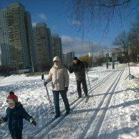 Семья на лыжах :: Павел Михалев