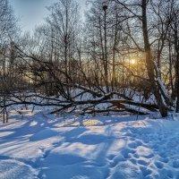 Зимний пейзаж 4 :: Андрей Дворников