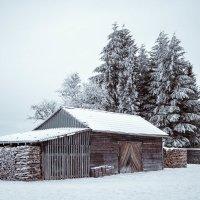 Зима :: Владимир Крамс