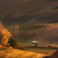Битва за урожай :: Влад Соколовский