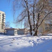 Любимый город зимой :: Лидия (naum.lidiya)