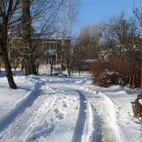 Музыка зимнего дня... :: Татьяна Смоляниченко
