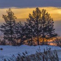 Палитра февральского восхода... :: Владимир Хиль